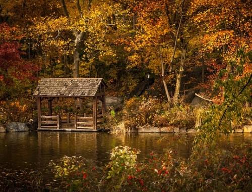 Wkrótce zaczyna się astronomiczna jesień