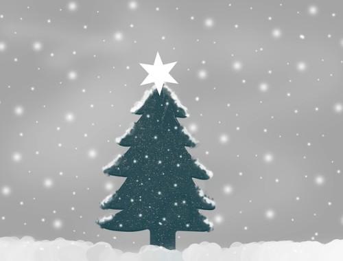 Boże Narodzenie -Czym warto kierować się podczas wybierania choinki?
