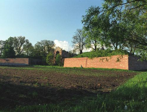Zamek w Dankowie, fot. Jerzy Strzelecki (CC BY-SA 3.0)